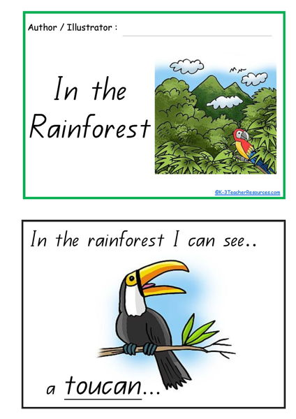 In The Rainforest Concept Book