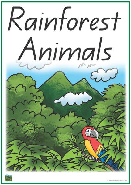 Rainforest Animals Vocabulary Words
