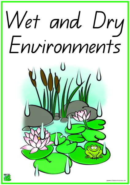 41 Wet And Dry Environments Vocabulary Words
