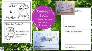 What has Feathers Concept Book 1