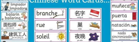 Word Cards in 3 Different Languages